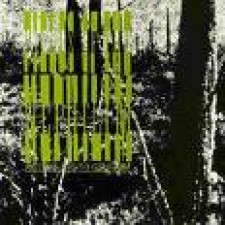 "FIELDS OF THE NEPHILIM - returning to gehenna (12"")"
